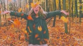 L'automne, c'est pas ta saison préférée